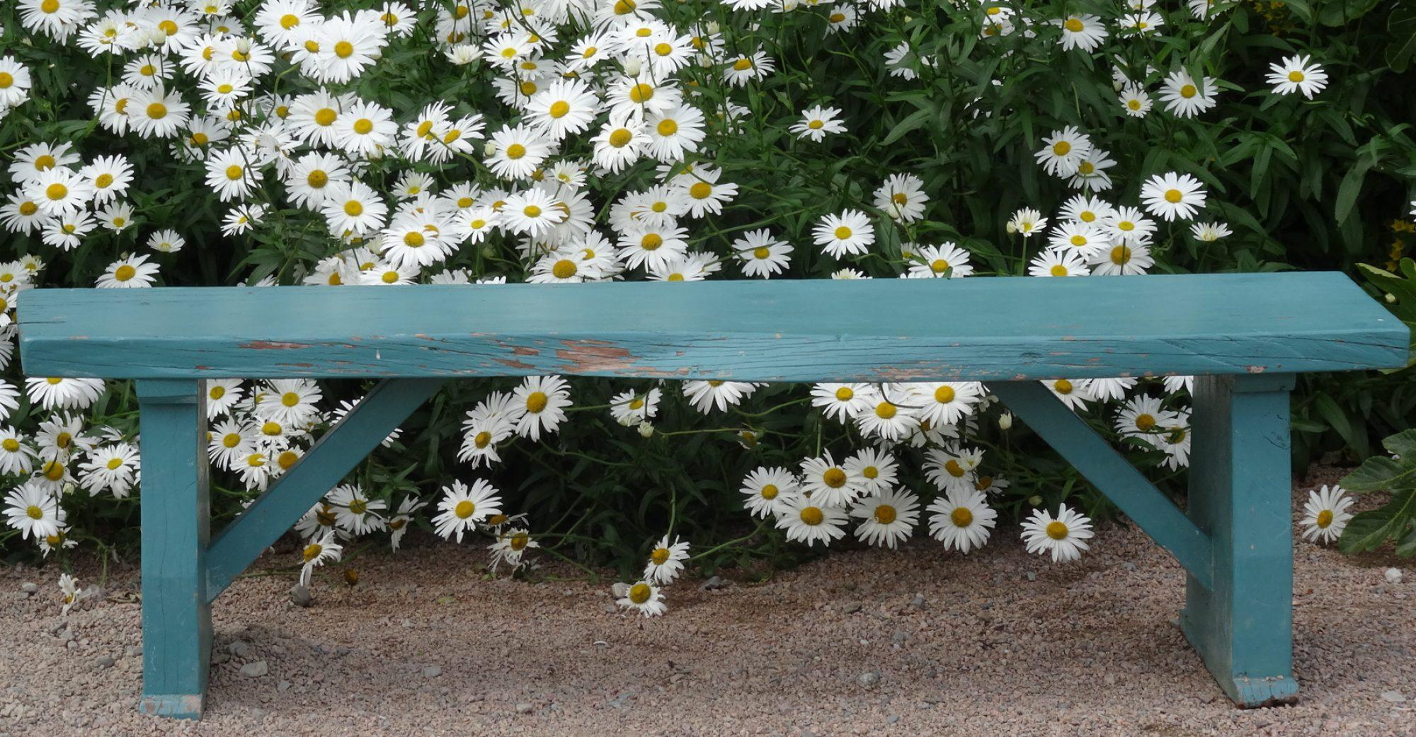 Blog de Naturopathie et de Réflexologie